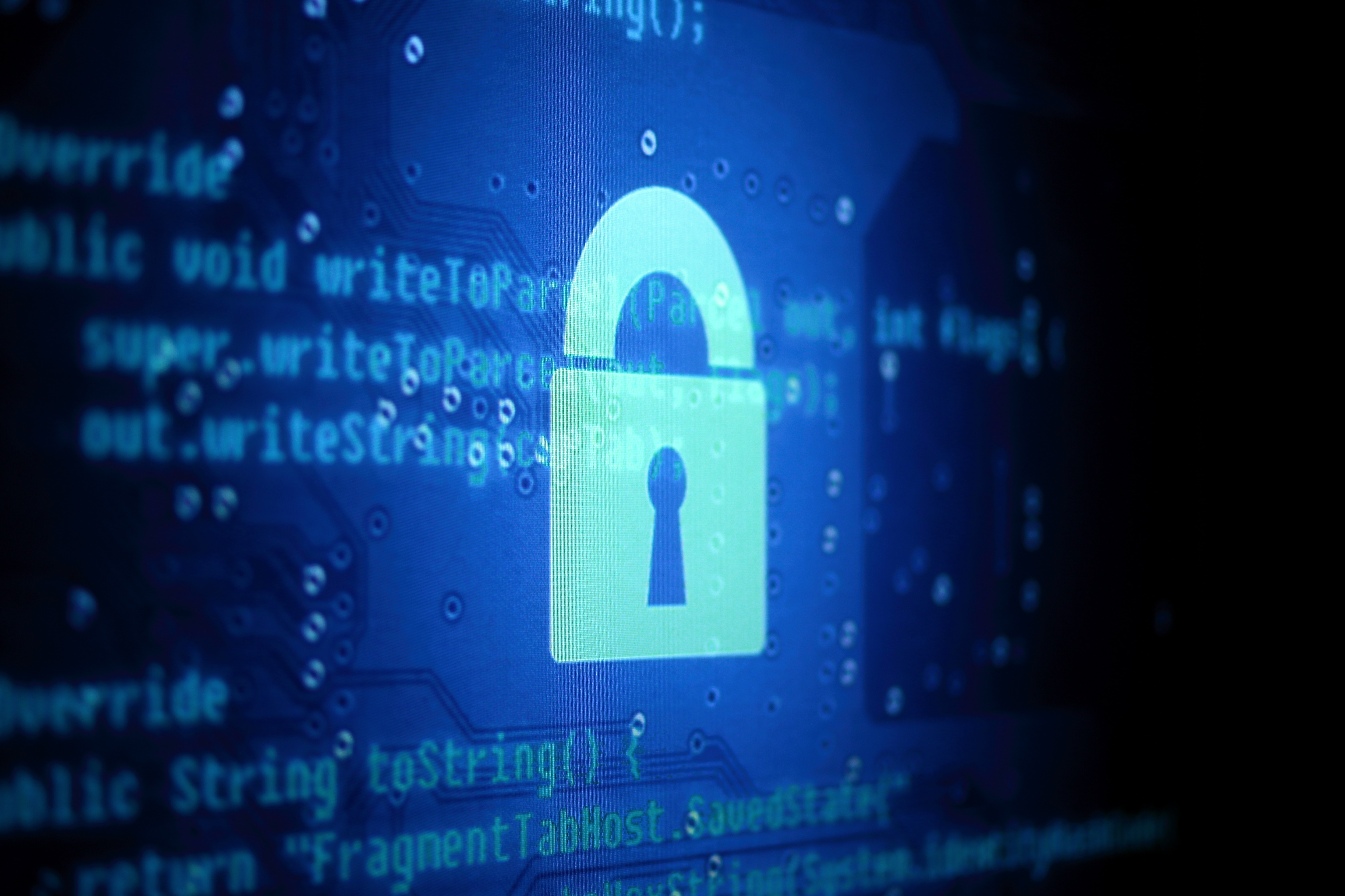 Building a Cyber-Secure Business [Infographic]